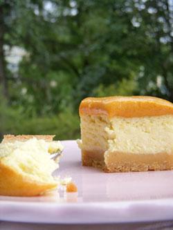 Cheesecake à la fleur d'oranger & abricot curd