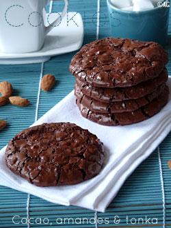 Cookies aux amandes, fève Tonka & cacao – Sans farine, sans beurre …