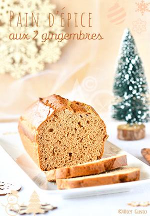 Pain d'épice aux 2 gingembres - Millésime 2016 Alter Gusto