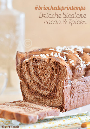 Brioche bicolore au cacao & épices #briochedeprintemps