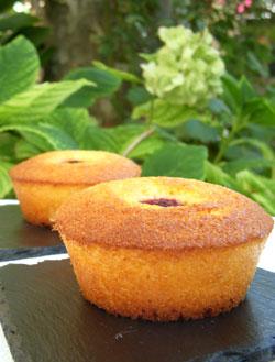 Cake de polenta au citron, coco & framboises