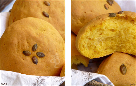 pain courge butternut