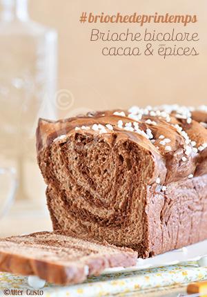 Brioche bicolore au cacao & épices #briochedeprintemps